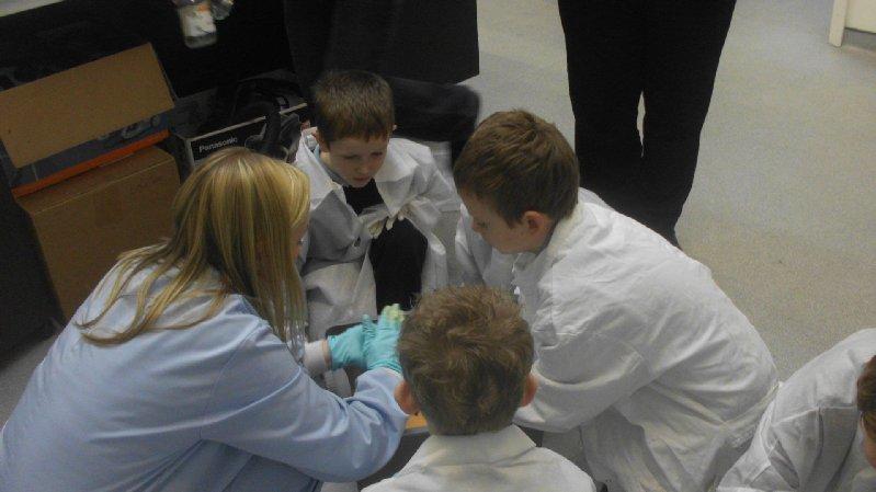 lab-2011-005_0