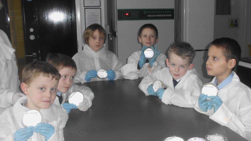 lab-2011-017