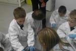 lab-2011-004_0