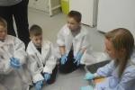 lab-2011-012